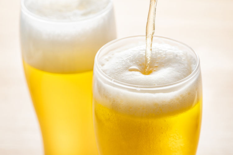 犬がビールを飲んでしまった場合の致死量は?(小型犬・中型犬・大型犬)