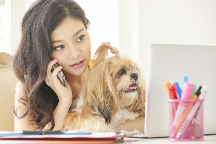対処法と応急処置①「動物病院に連絡する」