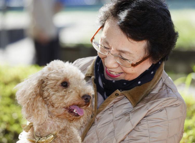 老犬ホームが生まれた背景①「人も犬も高齢化・長寿化」