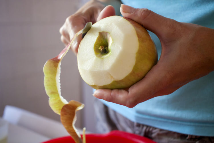 りんご カット 犬 与える