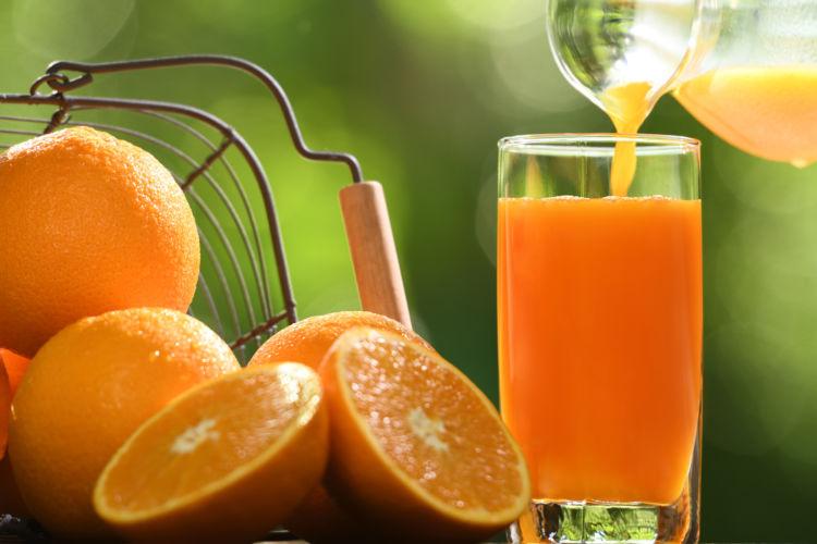 犬の「オレンジジュース」まとめ