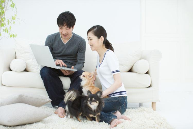 老犬の認知症 「予防」③【心構え】