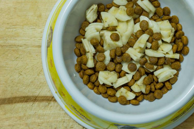 栄養素④【プロバイオティクス・プレバイオティクス】「お腹の調子を整える」