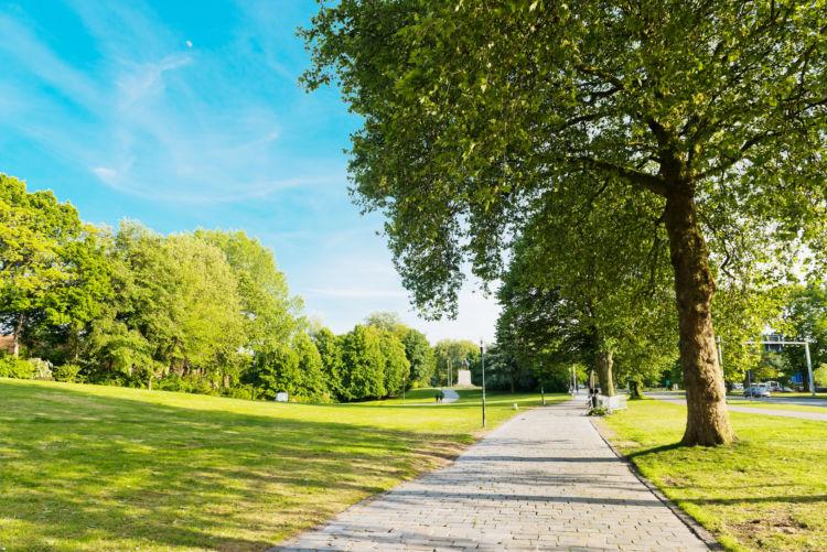 マダニの特徴と症状①「公園や植え込みにも生息」