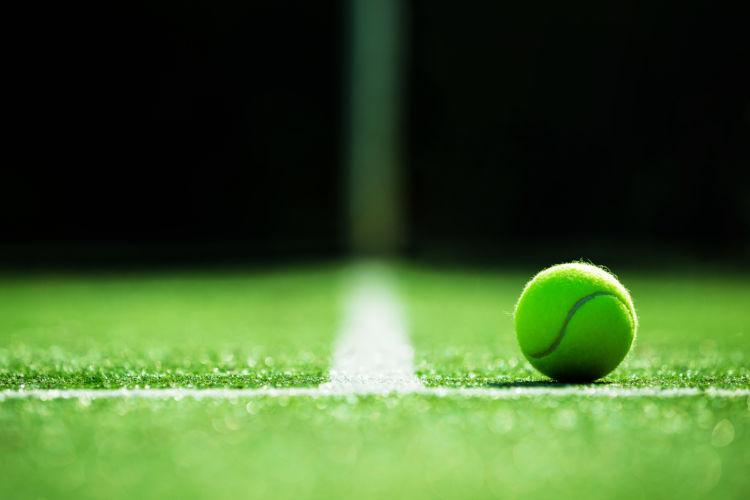 プロテニス選手 テニス