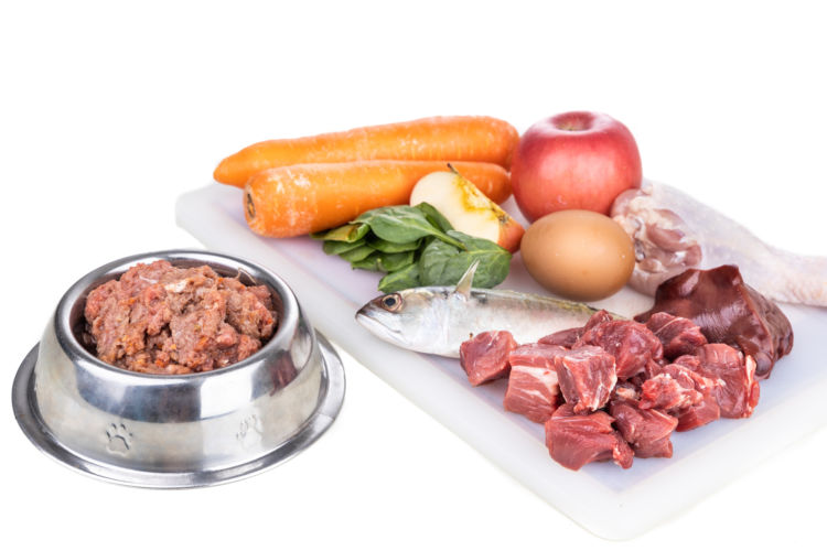 犬にビタミンを与える際のおすすめの食材(野菜)やおやつは?
