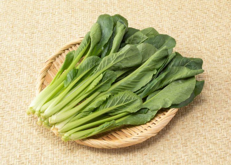 犬に「小松菜」「モロヘイヤ」を食べさせても大丈夫?