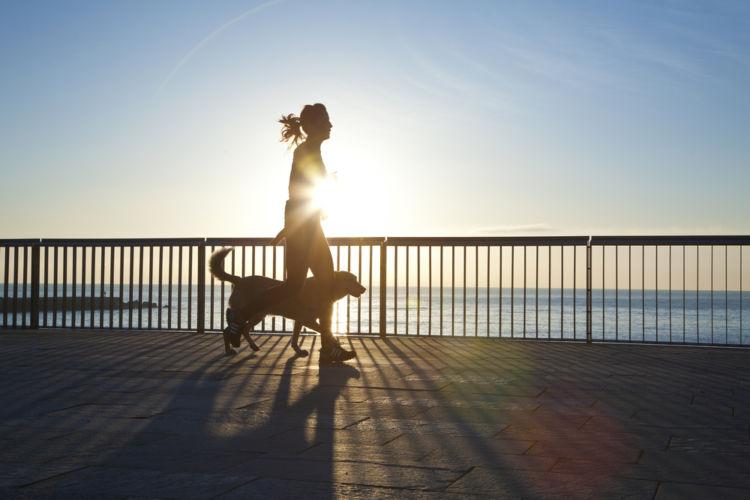 【獣医師監修】実践!愛犬の「運動ダイエット」具体的な対策や運動量と方法は?