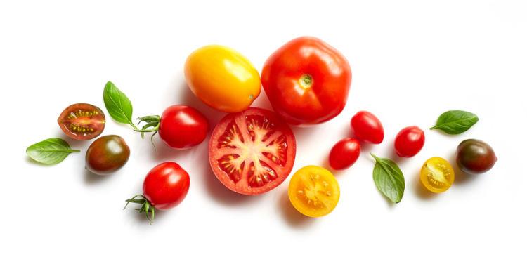 トマトを与える「メリット」①【リコピン】(抗酸化作用)