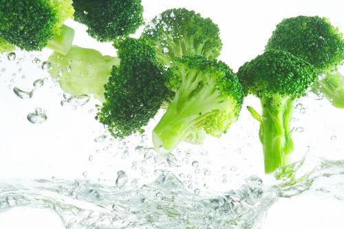 犬に【生】のブロッコリーや【茎】を食べさせても大丈夫?