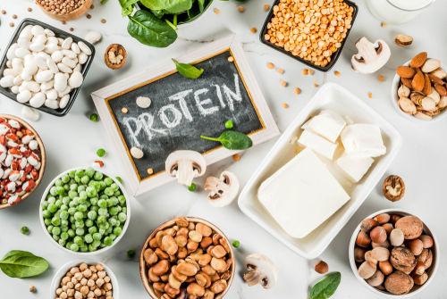 大豆に含まれる栄養素④【植物性たんぱく質】