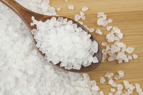 愛犬に与える塩(塩分)の適量は?