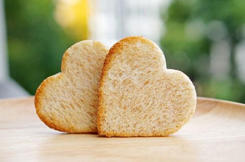 愛犬に与える「パン」のまとめ