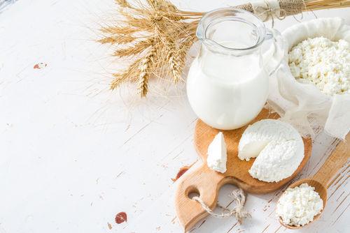 【牛乳レシピ】犬も食べられる、カッテージチーズ調理法!