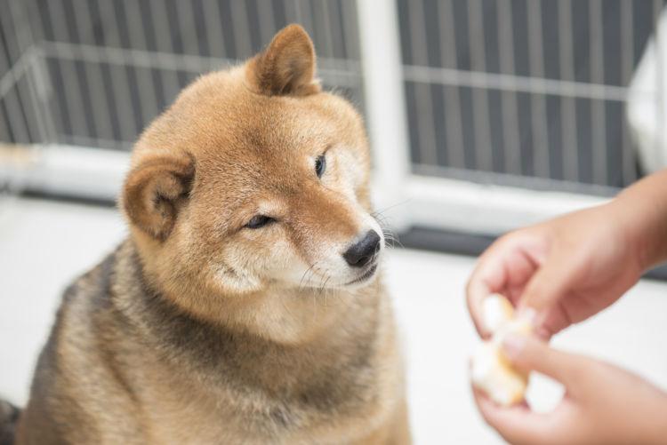 クッキー選び(市販)のポイント② 「販売サイズ」に注意!