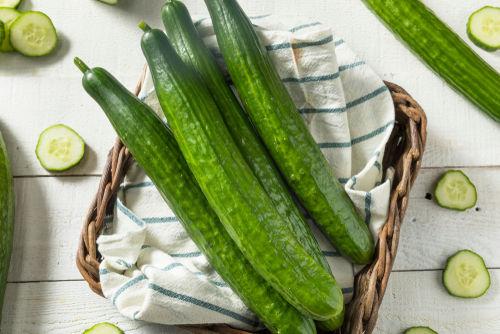 食べて大丈夫な野菜⑤【きゅうり】