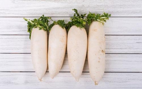 食べて大丈夫な野菜⑦【大根】