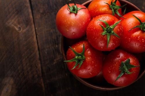犬にトマトを与える際の【注意点!】(トマチン)