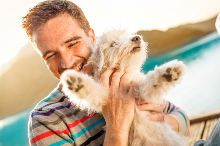 犬の扁平上皮癌【予防対策】