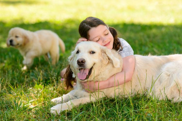 【獣医師監修】「ヒューマングレード」という考え方は正解?栄養学のプロが飼い主の不安を解消!