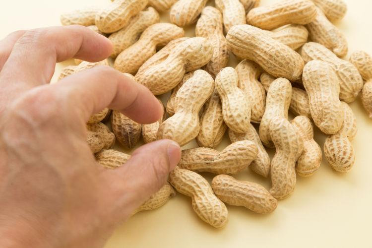 犬にピーナッツ「薄皮」「殻」をあげても大丈夫?