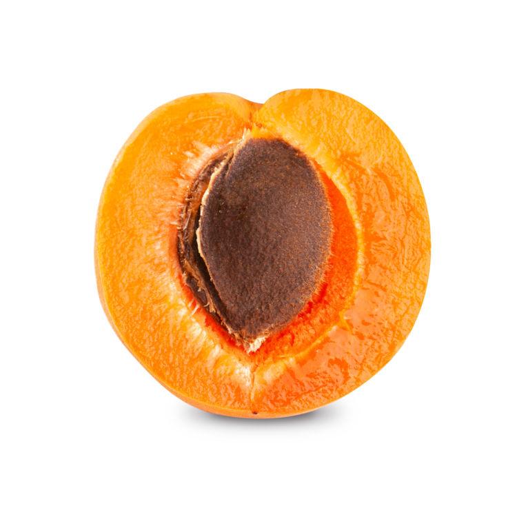 犬が桃の「種」を誤飲しないように注意!