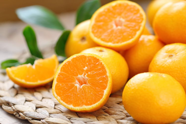 【獣医師監修】犬がオレンジを食べても大丈夫?適量は?皮や種、アレルギーに注意!
