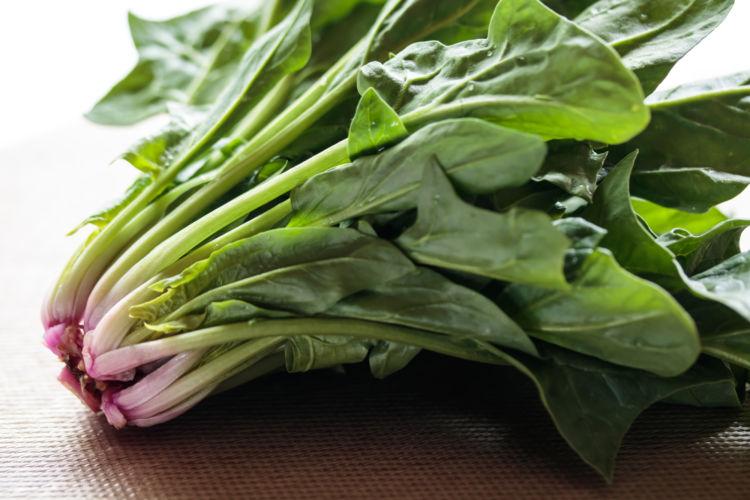 食べて大丈夫な野菜⑨【ほうれん草】