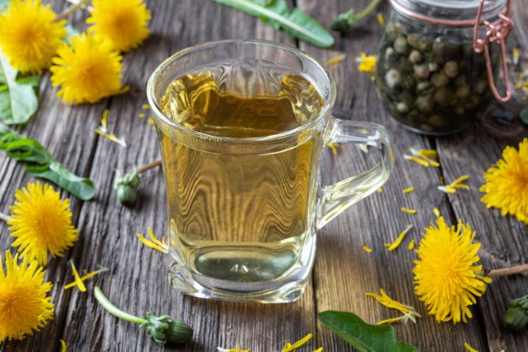 与えて大丈夫な飲み物⑦【タンポポ茶・そば茶など】